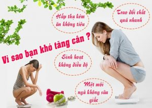 thuoc-tang-can-linh-spa